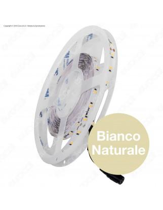 Wiva Striscia LED 2835 Monocolore 60 LED/metro CRI 97- Bobina da 5 metri