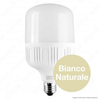 SkyLighting Lampadina LED E27 30W Bulb T100