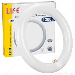 Life Circolina LED T9 G10q 14W Lampadina Diametro 21,5cm - mod. 39.940301N