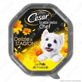 Cesar Scelta dello Chef Delezie di Stagione per Cani con Pollo alla Provenzale - 14 Vaschette da 150g