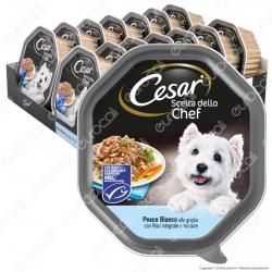 Cesar Scelta dello Chef Cibo per Cani con Pesce Bianco alla Griglia, Riso Integrale e Verdure - 14 Vaschette da 150g