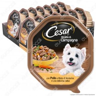 Cesar Ricette di Campagna per Cani con Pollo e Misto Verdurine in Salsa - 14 Vaschette da 150g