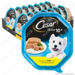 Cesar Senior 10+ Cibo per Cani con Pollo e Riso in Gelatina - 14 Vaschette da 150g