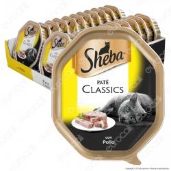 Sheba Paté Classic Cibo per Gatti al Pollo - 22 Vaschette da 85g