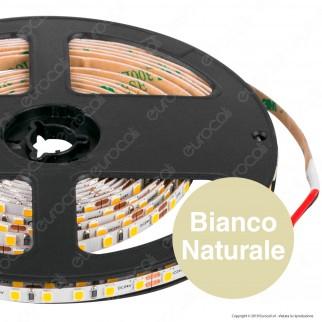 LEDCO Striscia LED 2835 Monocolore 240 LED/metro 24V - Bobina da 5 metri
