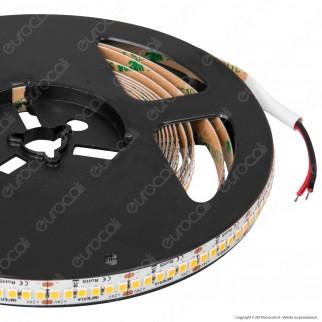 Imperia Striscia LED 2835 Monocolore 240 LED/metro 24V - Bobina da 5 metri - mod. 6013410 / 6013427 / 6013434