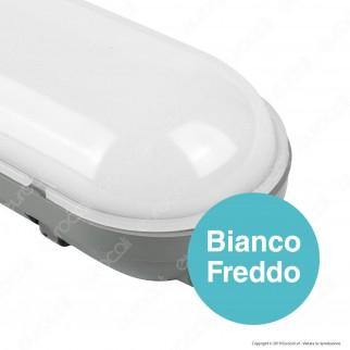 V-Tac VT-1250 Tubo LED Plafoniera 36W Lampadina 120cm Impermeabile con Kit di Emergenza - SKU 6448 / 6449