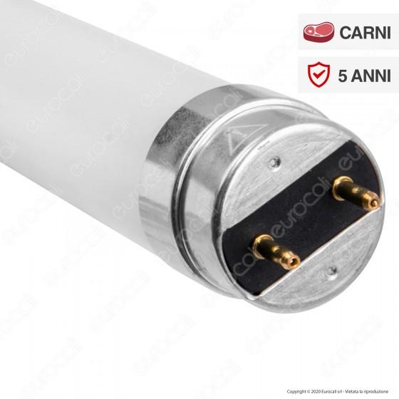 Bot Lighting Shot Tubo LED T8 Mod. Meat Tube G13 17,9W Lampadina 150cm - mod. LT1518FL