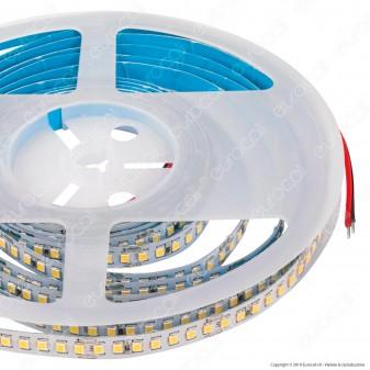 FAI Striscia LED 2835 Monocolore 168 LED/metro 24V CRI≥90 - Bobina da 5 metri - mod. 5136/BI/CA / 5136/BI/CO / 5136/BI/FR