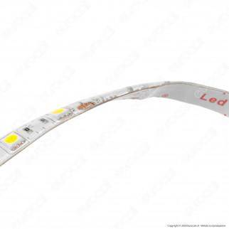 Sure Energy Striscia LED SMD 5050 14,4W/m 12V Monocolore 120 LED IP65 - Bobina da 5 metri - mod. T657