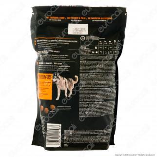 Crave Alimento Secco per Cane Adulto con Tacchino e Pollo Fresco - Busta da 1 KG
