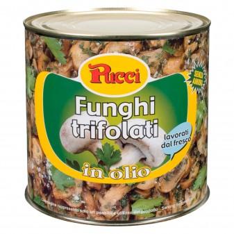 Pucci Funghi Trifolati in Olio - Lattina da 2Kg