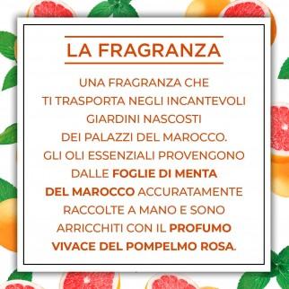 Air Wick Botanica Menta del Marocco e Pompelmo Rosa Spray per Ambienti