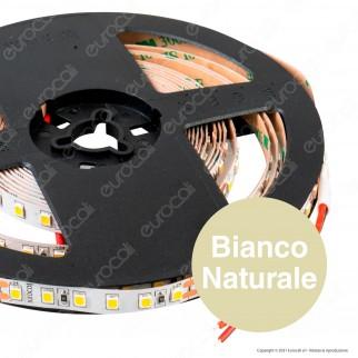 LEDCO Striscia LED 120 LED/m 24V Bobina 5m - mod. SL120LBC20/ES / SL120LBN20/ES / SL120LBI20/ES