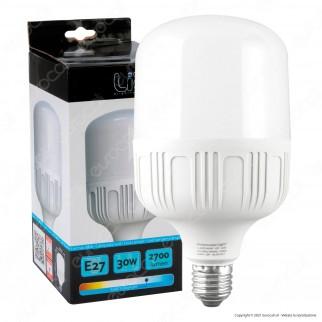 Intereurope Light Lampadina LED E27 30W Bulb T100 - mod. LL-BAYE10030F