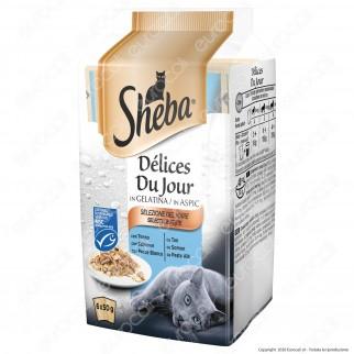 Sheba Delices Du Jour Selezione Raffinata Cibo per Gatti al Gusto Tonno, Salmone e Pesce Bianco - 6 Buste da 50g