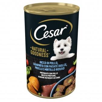 Cesar Natural Goodness Cibo per Cani con Pollo Patate Dolci Piselli e Mirtillo Rosso - Lattina da 400g