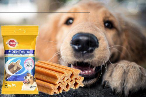 dentastix cane igiene