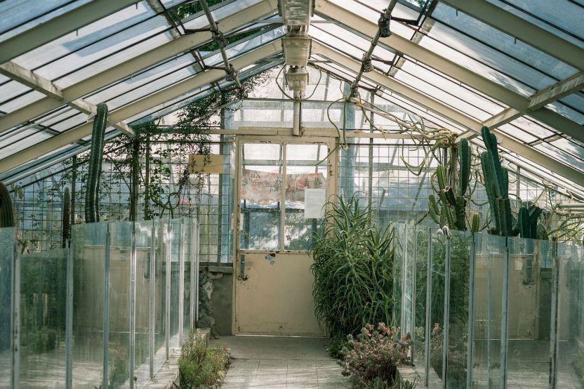 coltivare indoor con l'illuminazione LED