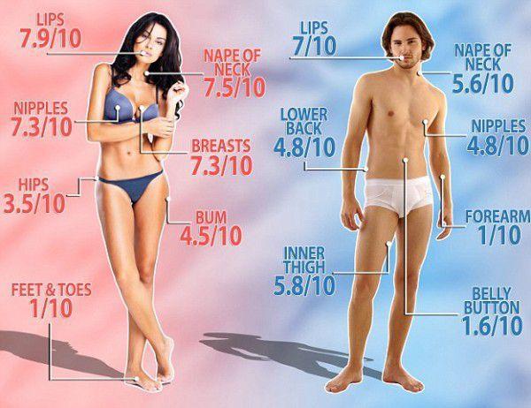 zone erogene del corpo maschile e femminile
